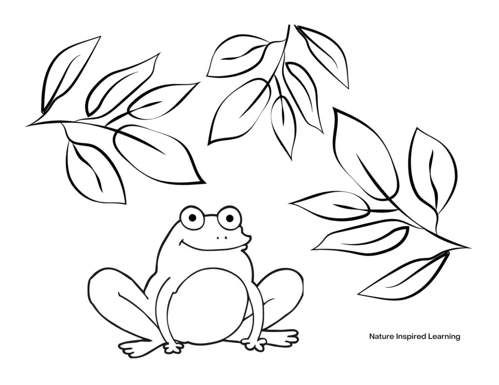 happy frog hidden under branches with leaves coloring page