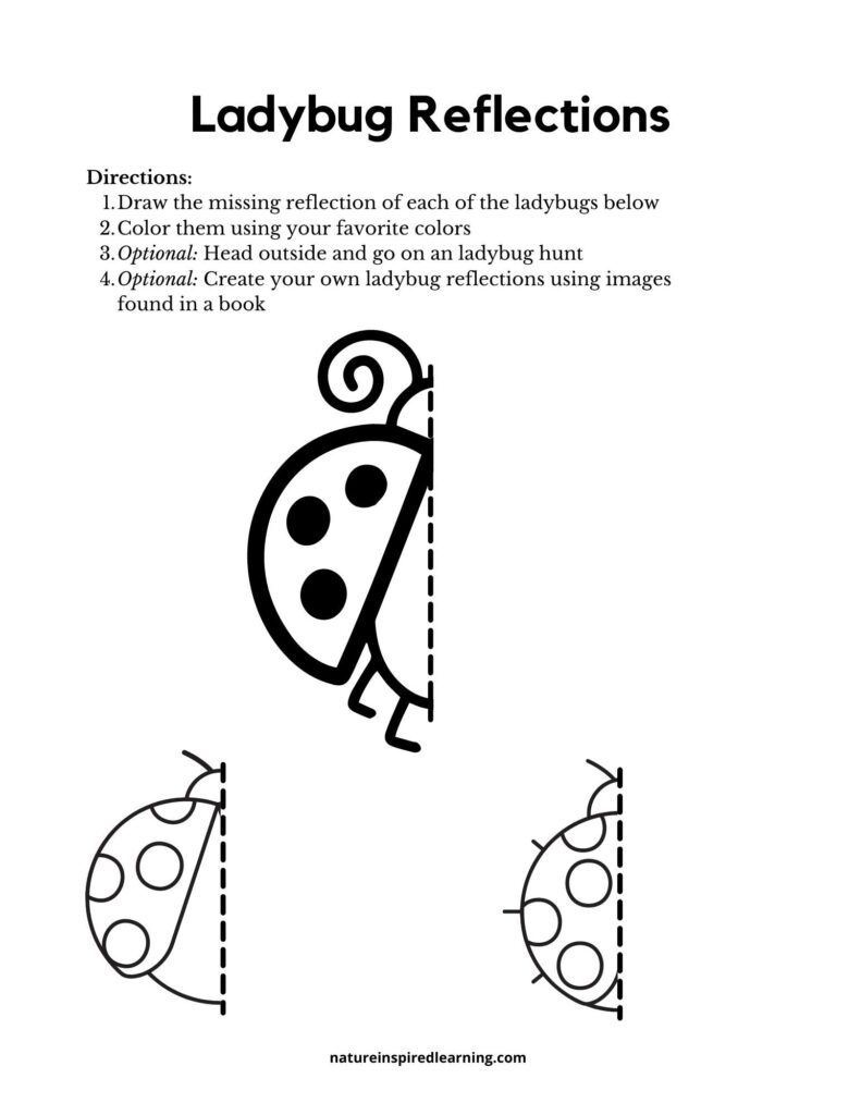ladybug printable draw the reflection of the ladybug half of a clipart ladybugs with dashed lines dividing the bug in half blank space to draw the reflection three on the printable with directions
