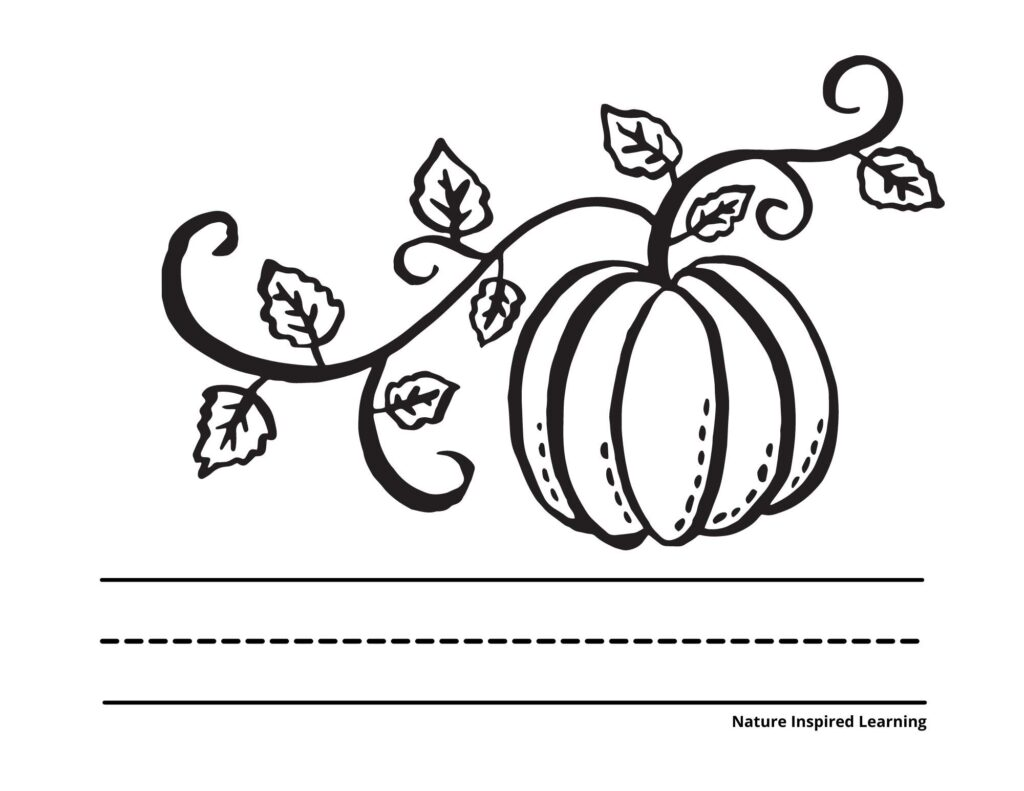 giant pumpkin with a vine and leaves coloring page with lines to write below the image