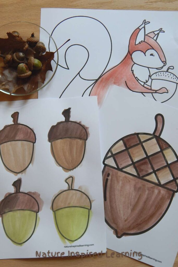 painted acorn and squirrel coloring pages overlapping on a wooden table with a glass plate holding real acorns and oak leaves