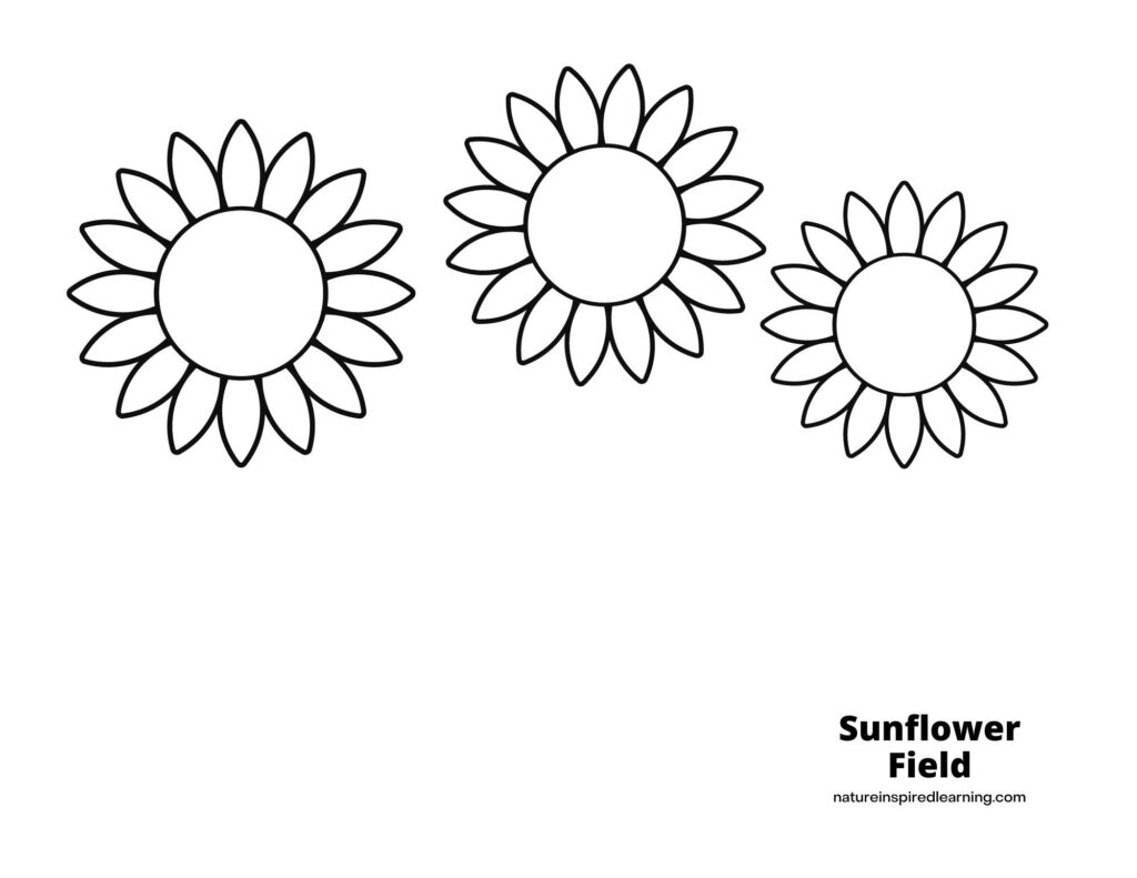 three sunflower heads in an arch across a coloring page with text Sunflower Field in bottom corner