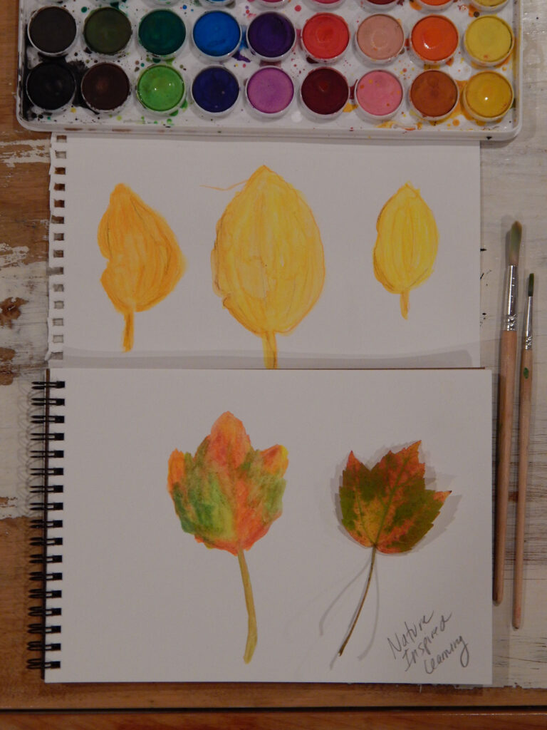 finished watercolor painted leaves three yellow beech leaves painted and one fall maple leaf on a second paper with a watercolor paint set above with two wooden paint brushes to the side all on a wooden table