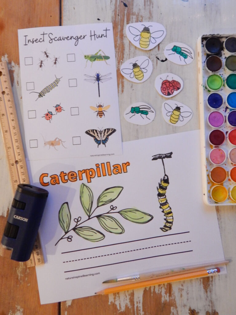 collection of insect printables, coloring pages, insect scavenger hunt, insect cutouts with watercolor paints, a ruler, magnifying glass, and a pencil on a wooden table