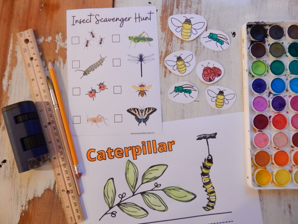 collection of insect printables, coloring pages, insect scavenger hunt, insect cutouts with watercolor paints, a ruler, magnifying glass, and a paint brush with a pencil on a wooden table