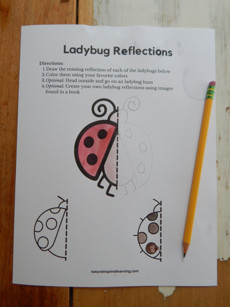 ladybug reflections worksheet printed off on a table colored in with red, peach, and brown, a pencil drawn reflection with a pencil on the paper all on a wooden table