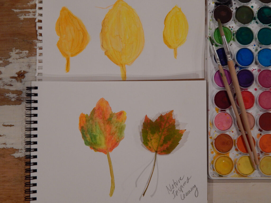finished watercolor painted leaves three yellow beech leaves painted and one fall maple leaf on a second paper next to a watercolor paint set with two wooden paint brushes laying across the paint all on a wooden table