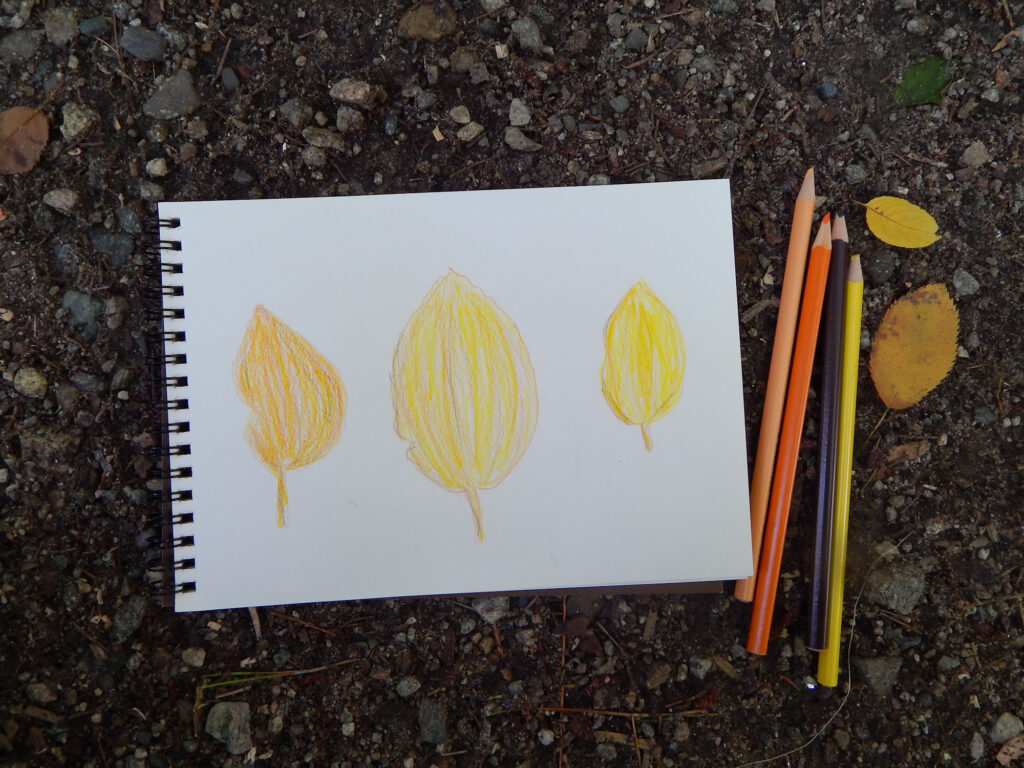 three hand drawn fall leaves using watercolor pencils outside on a rocky ground with four watercolor pencils and two yellow fall leaves