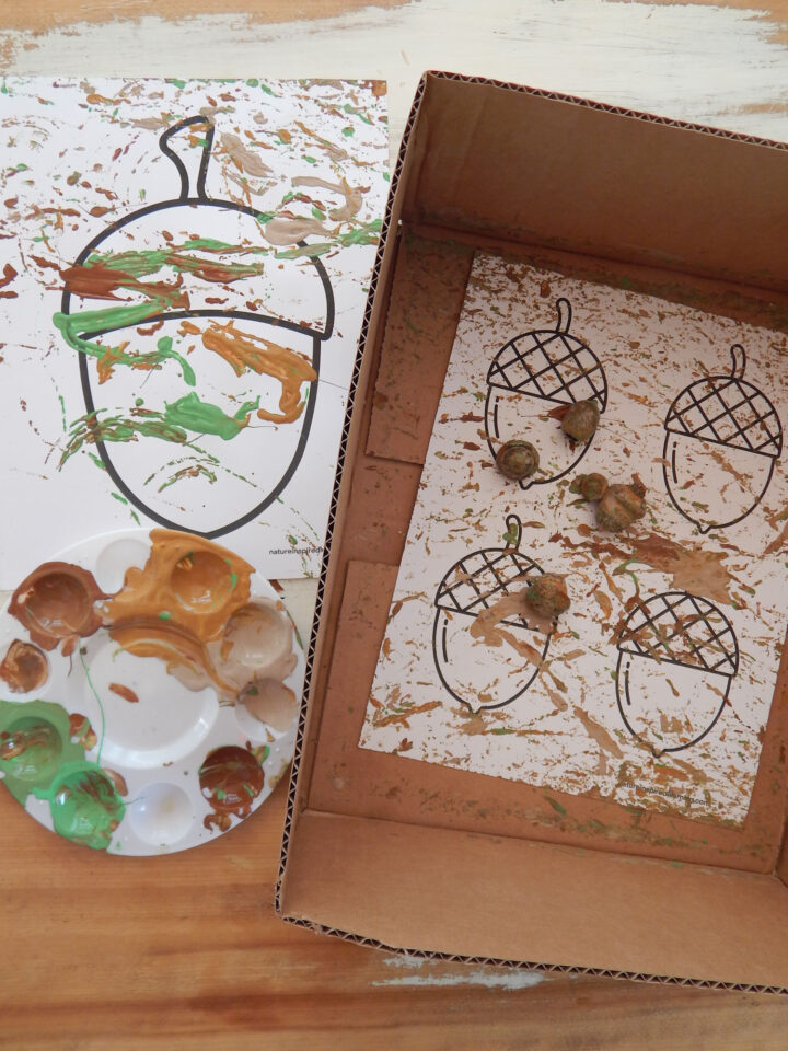 finished acorn process art made with real acorns covered in paint painted acorn template inside the box and painted large acorn template on table next to it with paint tray with paint