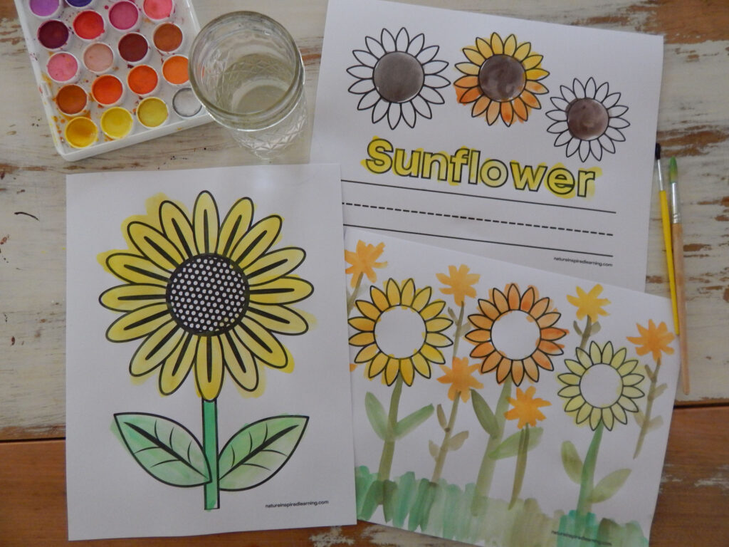 thee free printable sunflower coloring pages on a wooden table painted in using watercolor paints in yellow, green, and brown. Paint set, cup with water, and two paint brushes