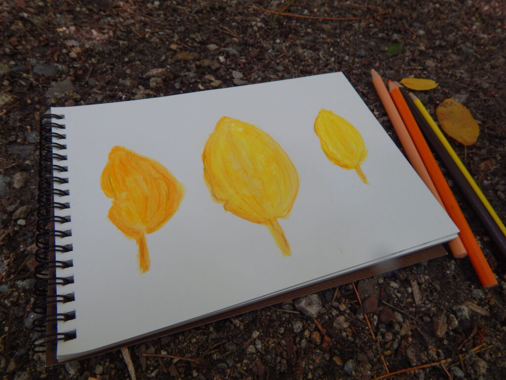 finished watercolor fall leaves in yellow and orange in a nature notebook with four watercolor pencils on the rock and dirt covered ground with two yellow fall leaves