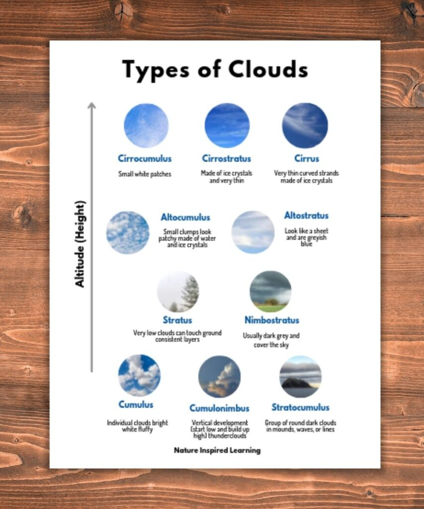 Types of Clouds Graphic on a wooden background cloud images within small circles organized by altitude cirrocumulus, cirrostratus, cirrus highest level, altocumulus and altostratus below then stratus and nimbostratus mid level with cumulus, cumulonimbus, and stratocumulus at the base short description of each cloud type