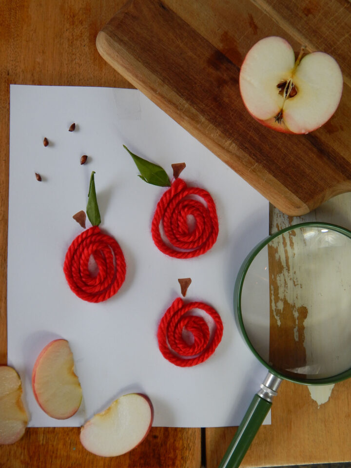 DIY apple yarn art three apples made with red yarn on white paper three apple slices bottom left corner green magnifying lens at right wooden cutting board with half of an apple cut open above all on wooden table