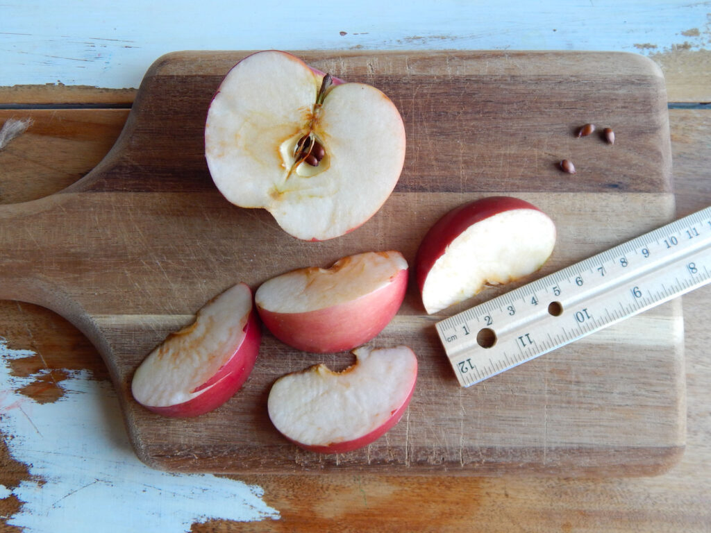 apple slices with half of an apple and apple seeds on a wooden cutting board ruler up against an apple slice for math measurement activity all on wooden table