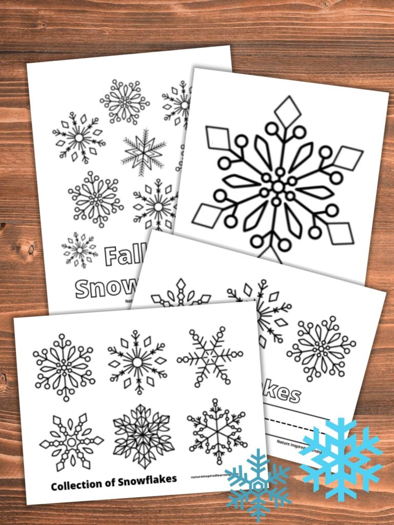 collection of snowflake coloring pages overlapping on a wooden background with two small blue snowflakes clipart in bottom corner